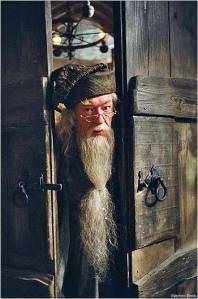 Albus-Dumbledore-albus-dumbledore-7749749-350-530